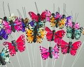 2 Dozen Miniature Rainbow Feather Butterflies 24 Monarch Bird Feather Butterflies 1.5 Inch Wingspan / Small Mini Size Butterflies