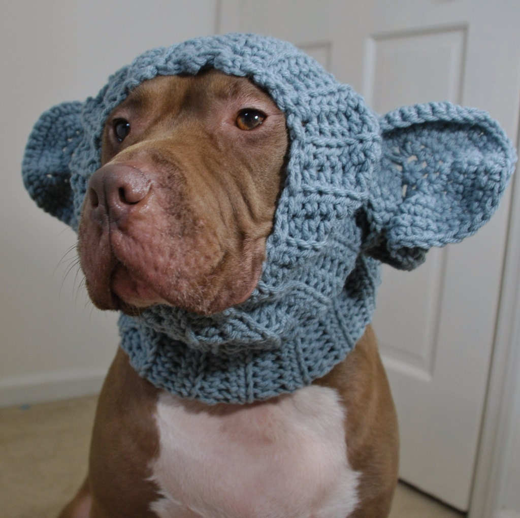 Dog Rubbing Ears On Rug: Dog Snood Elephant Crochet MADE TO ORDER By Courtanai On Etsy
