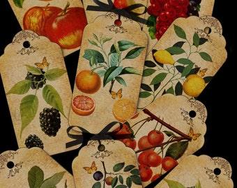 Vintage fruit tags/labels digital collage sheet. DIGITAL DOWNLOAD