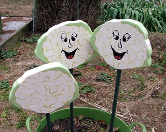 CAULIFLOWER - Double Sided Wooden Garden Personality Plant Marker -Gift for the gardener