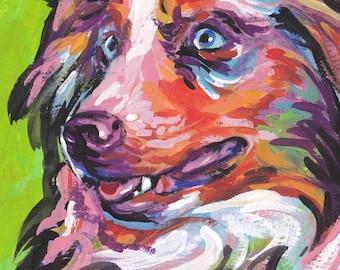 red merle Australian Shepherd art print of aussie pop art dog painting bright colors 8x8 inch