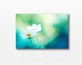 photography canvas print canvas nursery art 12x12 24x36 floral wall art photography canvas art large canvas wall decor cosmos teal blue
