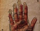 The Alchemists Hand, photography, surreal, alchemy, occult, magic, art,mixed media