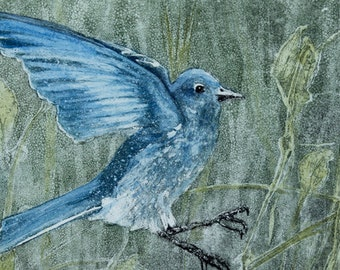 "MOUNTAIN BLUEBIRD ETCHING 11x14 matted original hand colored etching/6""x9"" plate (image) size"
