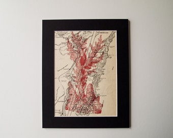 "Coral Print on Vintage NSW Australia Map, 8 x 10"" Mounted"
