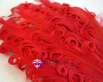 1 Curly Nagorie Feather Pads - Goose Feather Pad - red