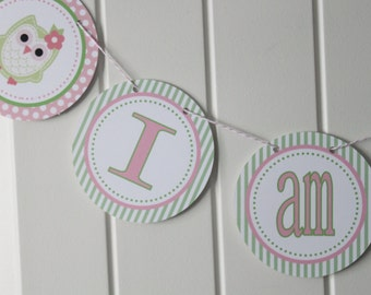 LOOK WHOOO'S .... OWL Theme First Birthday - Highchair Banner I Am One - Party Packs Available