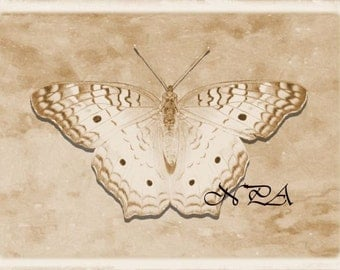 Rustic Sepia Butterfly Matted Picture Art Print A495