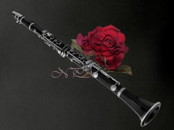 Black and White Clarinet with Red Rose by nicolphotographicart
