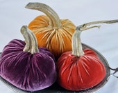 On VACATION - Velvet PUMPKINS  - 3 - Real Pumpkin Stems and SILK Velvet - Fall Colors - Free Shipping - grp7 - LuxeBoudoir