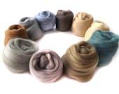 Merino Wool Tops - Felting - Spinning  - Neutral  - 21 micron - 100g - 3.5oz - ROCK POOL