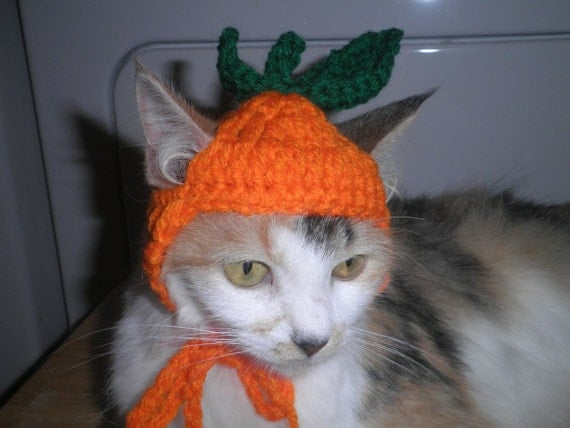 Cat or Dog Pumpkin Hat Halloween Costume Party Hat  Crocheted Kitty Hat Ready to Ship