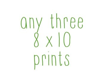 Any Three Photographs - 8x10 - Your Choice of Prints - Customized Art - Instant Photography Collection - Three Beautiful Photographs
