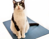 Scratch Mat for Cats, The Yoga Cat Mat Toy: Slate Blue, Unusual Gift for Cat Lover, Unqiue Gift for Yoga and Cat Lover, Yoga Gift
