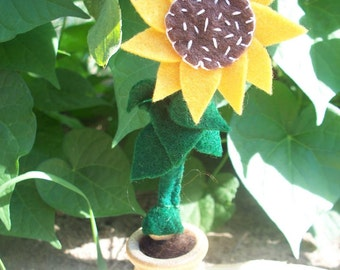 Sunflower Root Child - Waldorf Gnome - Sunflower Gnome in a Pot
