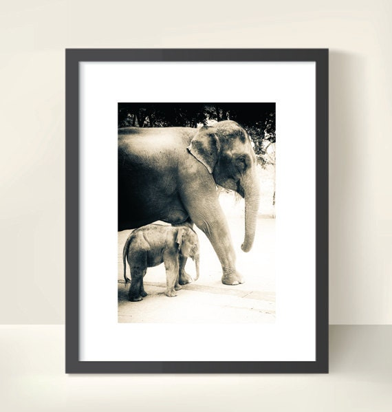 Mother and Baby Elephant. Thailand. Southeast Asia. Travel Photography. Sepia Print by OneFrameStories.