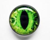 30mm handmade glass eye cabochon - green cat or dragon eye - standard profile