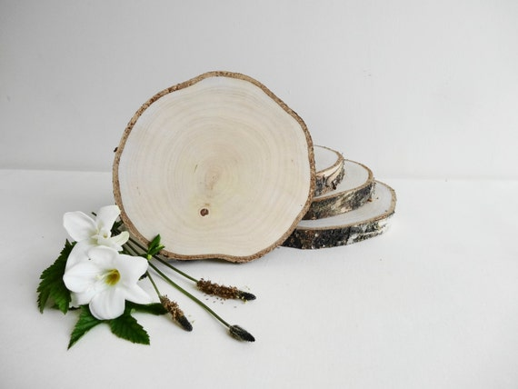 Birch Tree Slices,Birch Slice, Birch Slabs,Wedding Centerpiece, Rustic Wedding Decor, Unfinished Wood Slice, Set of 6