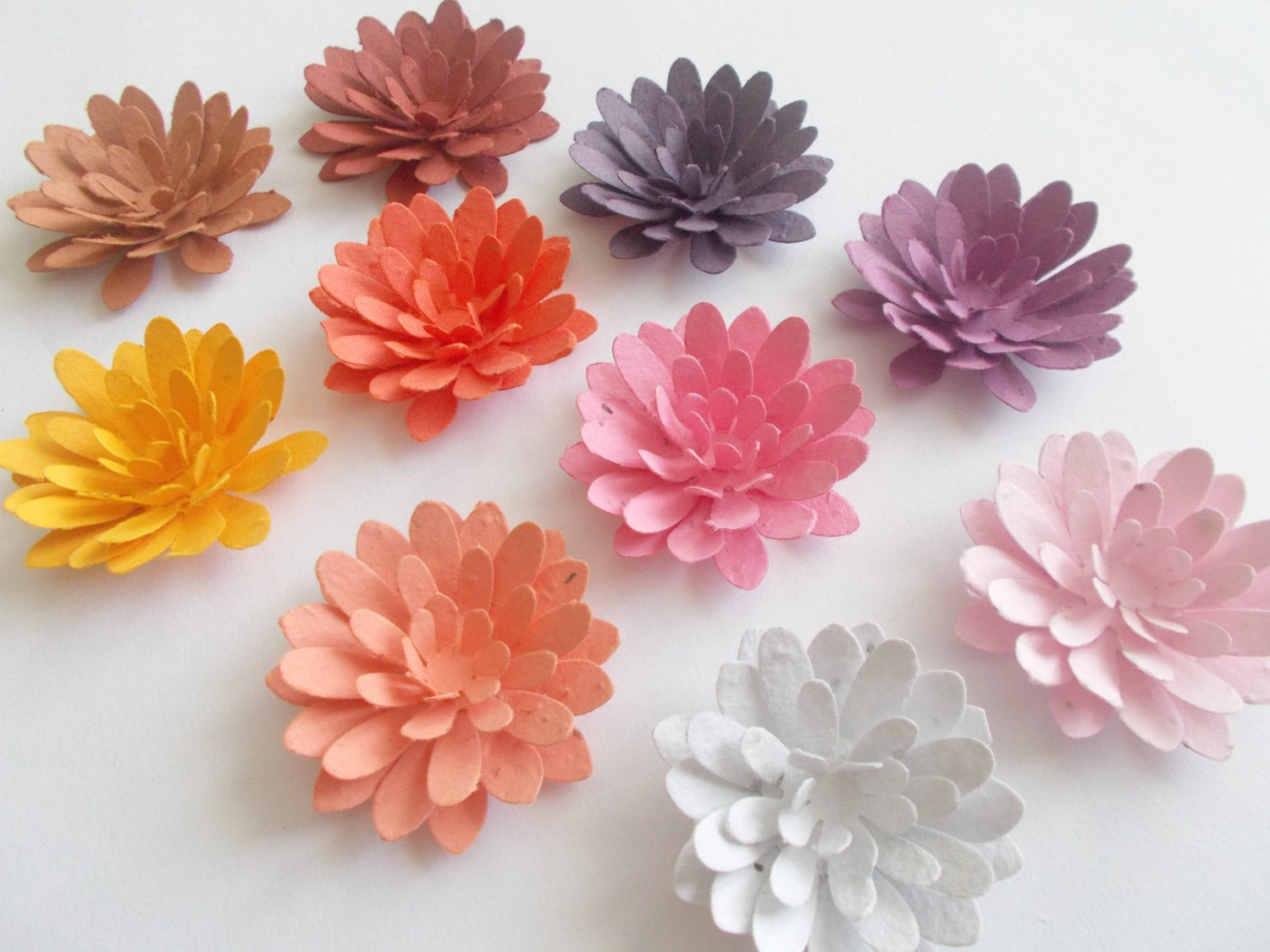 12 Plantable Paper Mum Flowers Eco Friendly Wedding and