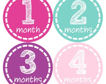 Baby Month Stickers Baby Monthly Stickers Girl Monthly Bodysuit Stickers Baby Shower Gift Photo Prop Baby Milestone Sticker  144