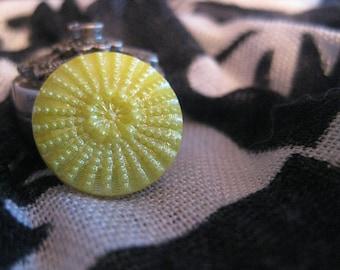 SunBurst Design in Yellow Czech Glass Button 18mm 1950's
