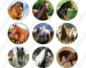 Horses digital collage sheet size 4x6 for bottlecaps 1 inch - INSTANT DOWNLOAD