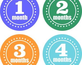 Baby Month Stickers Baby Monthly Stickers Neutral Monthly Shirt Stickers Baby Shower Gift Photo Prop Baby Milestone Sticker
