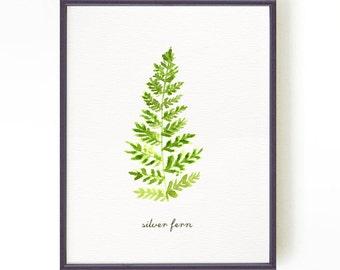 SILVER FERN watercolor painting, Nature art print, Fern print, Botanical print, Green bedroom wall art, New Zealand print Buy 2 Get 1 Free