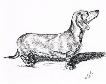Dachshund by J. Renner Boxed Set of 5 B/W Blank Notecards w/Envelopes -Free US Shipping