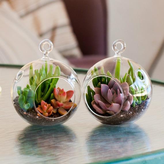 Mini Terrariums Think Crafts By Createforless