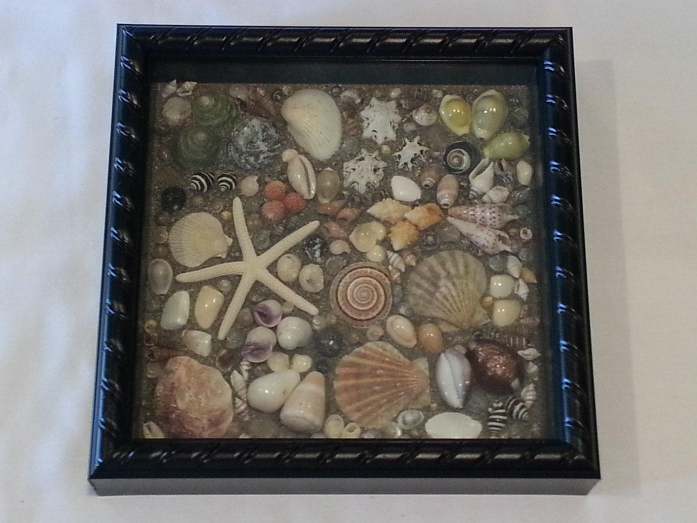 Seashell Shadow Box Home Decor