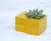 Geometric planter, mustard, cube, succulent planter, office decor, customized gift, or candle holder, 30% off