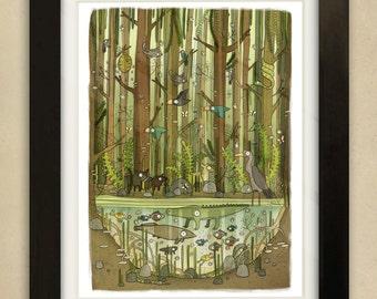 Mangrove Swamp Illustration - Children's Art Print