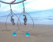 Sea horse earings