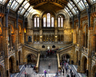 London's Natural History Museum: Grand Central Hall - Fine Art Photographic Print