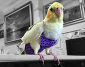 A Nappy/Diaper/Flight Suite for your Cockatiel - Purple-GrapesPattern. #PU001