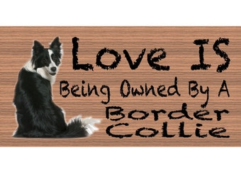 Border Collie Wood Signs  - Handmade Wood sign, Border Collie GS429 Border Collie wood sign, Gigglesticks border collie sign