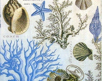 TWO (2) Seashore, Beach, Seashells, Paper Cocktail Napkins for Decoupage and Paper Crafts
