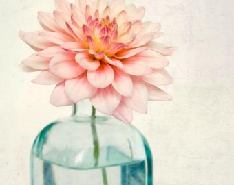 Flower Photography, Botanical Print, Fine Art Photograph, Spring Flower Photo, Botanical Wall Art, Pink Dahlia