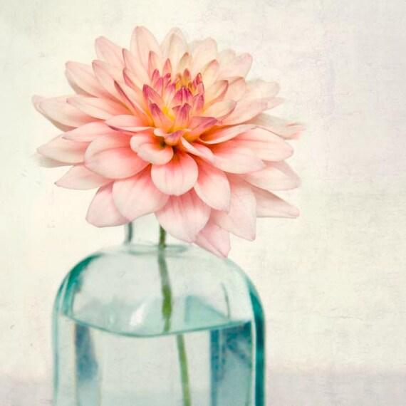 Flower Photography, Botanical Print, Fine Art Photograph, Spring Flower Photo, Botanical Wall Art, Pink Dahlia
