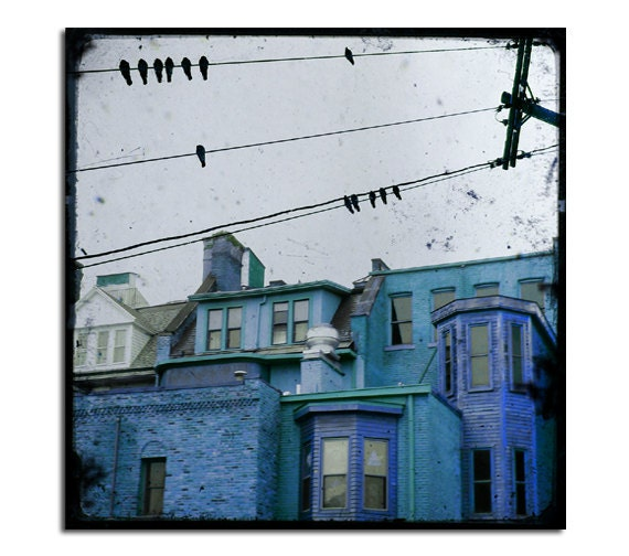 City Art Print, Birds On Wires, Houses, Cityscape Photograph, Architecture Image, Urban Art - Little Blue Houses