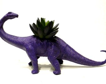 LIMITED Large Purple Dinosaur Planter for Succulents and Small Cacti Plants Great Gift for the Spring and Summer Months