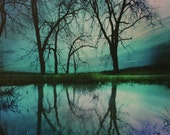 Lake house decor, 16x20, Night sky, Art, photography, nature, wall art, tree art, moon, Fine Art photography, Cabin decor, limited edition