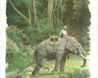 Vintage Animal Print - Elephant Print - Jungle Elephant - Book Plate - Vintage Book Print- Readers Digest - Animal Story Book - 1970s