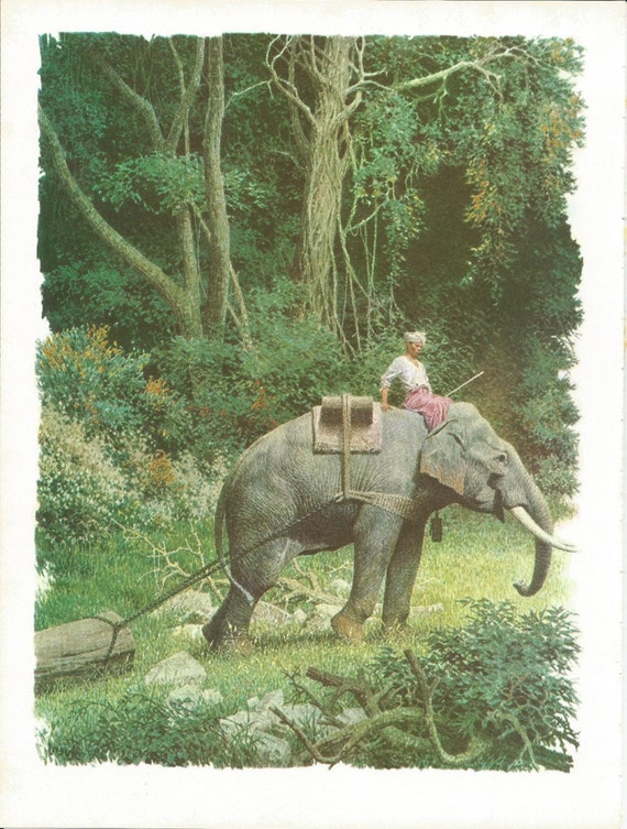 Items similar to vintage animal print elephant print for Classic jungle house for small animals
