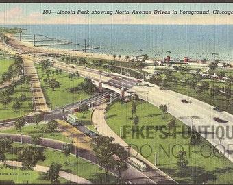 Chicago, Illinois Vintage Postcard - Lincoln Park, North Avenue Drives (Unused)