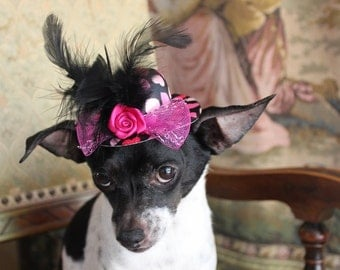 Black hat with heart  print     mini  hat with   feather  bow and   flowers for dog or cat