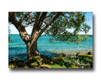 Lake House Photography Print, Beach House Decor, Cottage, Ocean Blue, Green, Tree, Cabin, Man Cave Art, Gift for Him, 8x10 or 11x14, Serene