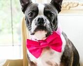 Satin Wedding Bow Tie Dog Collar - Fuchsia
