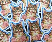 Lil Bub Space Galaxy Cat stickers by Rudy Fig, kitten, grumpy cat, internet cat, celebricat
